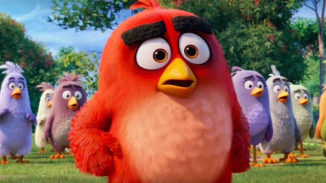 rozzlobení ptáci